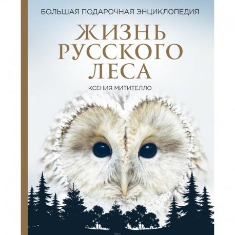 Жизнь русского леса. Большая подарочная энциклопедия (сова)